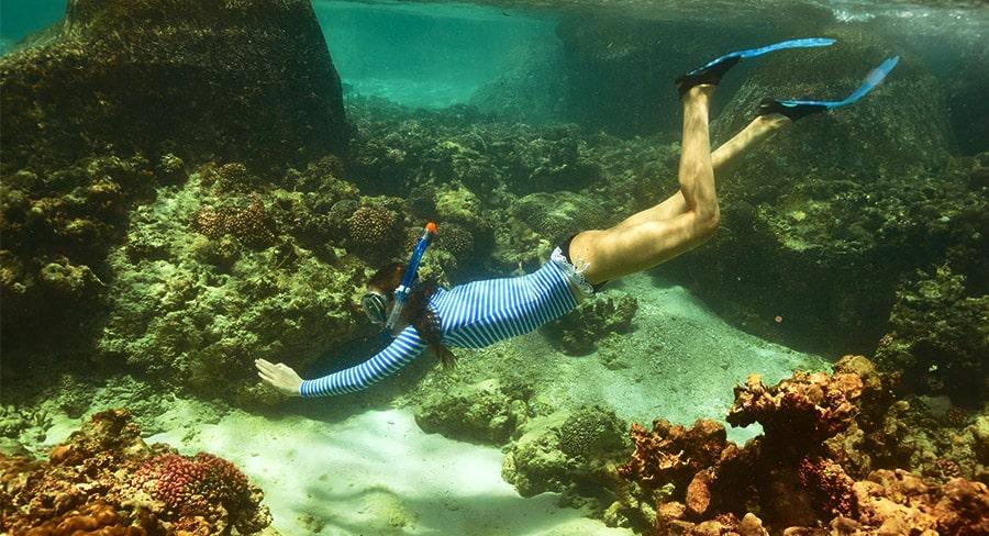 atrakcje teneryfa - snorkeling